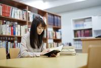 図書館で本を読む若い女性