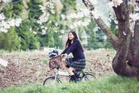 桜並木を自転車で走る女子高生 10736005998| 写真素材・ストックフォト・画像・イラスト素材|アマナイメージズ