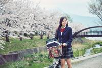 桜並木で自転車を押す女子高生