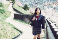 桜並木を歩く女子高生