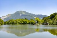 初夏の伊吹山全景と三島池