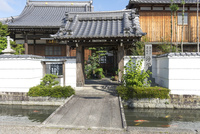五個荘金堂の町並み,浄栄寺と水路に泳ぐ鯉