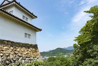彦根城より望む佐和山