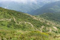 伊吹山登山道 10737000321| 写真素材・ストックフォト・画像・イラスト素材|アマナイメージズ