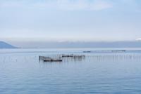 琵琶湖の伝統漁法  えり漁 10737000337| 写真素材・ストックフォト・画像・イラスト素材|アマナイメージズ