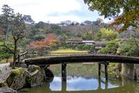 紅葉の玄宮園にて橋と彦根城 10737000365| 写真素材・ストックフォト・画像・イラスト素材|アマナイメージズ