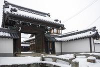 妙楽寺の門(伊庭の水辺景観) 10737000372| 写真素材・ストックフォト・画像・イラスト素材|アマナイメージズ