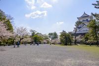 桜咲く伊賀上野城と上野公園 10737000409| 写真素材・ストックフォト・画像・イラスト素材|アマナイメージズ