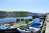 7月夏 北海道の花咲港