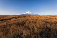 梨ケ原より望む富士山