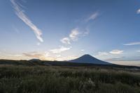 早朝の朝霧高原より望む富士山