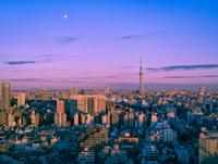 東京スカイツリーと夕方の空に昇る月