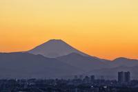 東京都練馬区より望む遠景の富士山と東京郊外