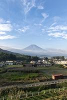 富士吉田市大明見よりのぞむ富士山