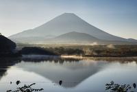 朝の精進湖と富士山と釣り人
