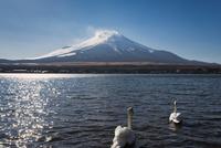河口湖より望む夕方の富士山