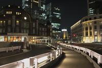 東京駅丸の内駅舎へと続く歩道