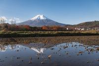 富士吉田市より望む冠雪した富士と田んぼの逆富士(横ワイド・右スペース)