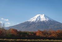 富士吉田市より望む冠雪した富士と紅葉(左にスペース)
