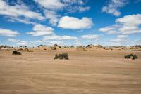 ムンゴ国立公園(Mungo National Park) 10743000179| 写真素材・ストックフォト・画像・イラスト素材|アマナイメージズ