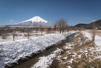 忍野村より望む小川越しの富士山 10743000180| 写真素材・ストックフォト・画像・イラスト素材|アマナイメージズ