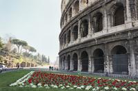 ローマのコロッセオ 10743000187| 写真素材・ストックフォト・画像・イラスト素材|アマナイメージズ