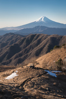 白谷丸山頂より望む富士山 10743000192| 写真素材・ストックフォト・画像・イラスト素材|アマナイメージズ