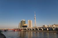 駒形橋より望む隅田川越しの東京スカイツリー 10743000195| 写真素材・ストックフォト・画像・イラスト素材|アマナイメージズ