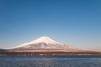 山中湖より望む冠雪した富士山 10743000205| 写真素材・ストックフォト・画像・イラスト素材|アマナイメージズ