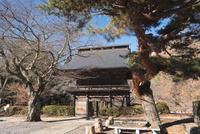 景徳院の山門 10743000219| 写真素材・ストックフォト・画像・イラスト素材|アマナイメージズ