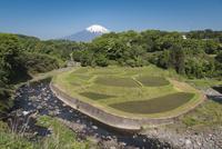 馬伏川と馬蹄形の棚田と富士山 10743000248| 写真素材・ストックフォト・画像・イラスト素材|アマナイメージズ