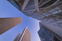 見上げる新宿の高層ビル群 10743000251| 写真素材・ストックフォト・画像・イラスト素材|アマナイメージズ