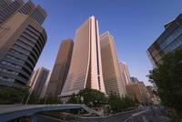 新宿の高層ビル群 10743000252| 写真素材・ストックフォト・画像・イラスト素材|アマナイメージズ