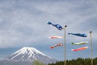 鯉のぼりと富士山 10743000292| 写真素材・ストックフォト・画像・イラスト素材|アマナイメージズ