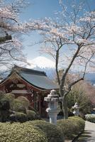 御殿場平和公園より望む富士山 10743000300| 写真素材・ストックフォト・画像・イラスト素材|アマナイメージズ