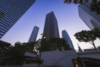 夜明けの新宿高層ビル群 10743000306| 写真素材・ストックフォト・画像・イラスト素材|アマナイメージズ