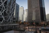 新宿の高層ビル群 10743000334| 写真素材・ストックフォト・画像・イラスト素材|アマナイメージズ