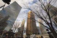 新宿の高層ビル群 10743000343| 写真素材・ストックフォト・画像・イラスト素材|アマナイメージズ