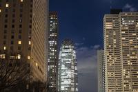 新宿中央公園より望む新宿の高層ビル群 10743000344| 写真素材・ストックフォト・画像・イラスト素材|アマナイメージズ