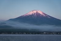 山中湖より望む紅富士 10743000364| 写真素材・ストックフォト・画像・イラスト素材|アマナイメージズ