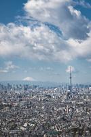 アイ・リンクタウン展望施設より望む富士山と東京スカイツリーと東京のスカイライン 10743000374| 写真素材・ストックフォト・画像・イラスト素材|アマナイメージズ