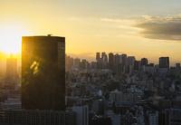 文京シビックセンター展望ラウンジより望む東京のスカイライン 10743000385| 写真素材・ストックフォト・画像・イラスト素材|アマナイメージズ