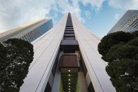 見上げる新宿の高層ビル群 10743000391| 写真素材・ストックフォト・画像・イラスト素材|アマナイメージズ