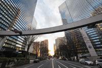 新宿警察署東交差点より望む夕方の西新宿 10743000392| 写真素材・ストックフォト・画像・イラスト素材|アマナイメージズ