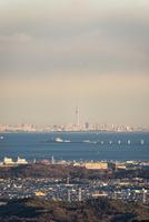 鹿野山より望む東京湾越しの東京のスカイラインと東京スカイツリー 10743000416| 写真素材・ストックフォト・画像・イラスト素材|アマナイメージズ