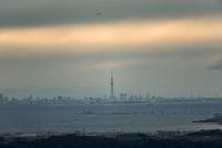 鹿野山より望む東京湾越しの東京のスカイラインと東京スカイツリー 10743000417| 写真素材・ストックフォト・画像・イラスト素材|アマナイメージズ