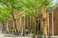 神戸旧居留地の街並み 10750000285| 写真素材・ストックフォト・画像・イラスト素材|アマナイメージズ