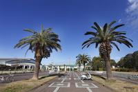 鵠沼運動公園 10754000711| 写真素材・ストックフォト・画像・イラスト素材|アマナイメージズ