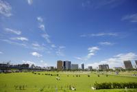 多摩川緑地野球場 川崎ビル群