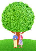 老夫婦と大樹